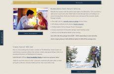 Hampton Terrace Website Design - Specials