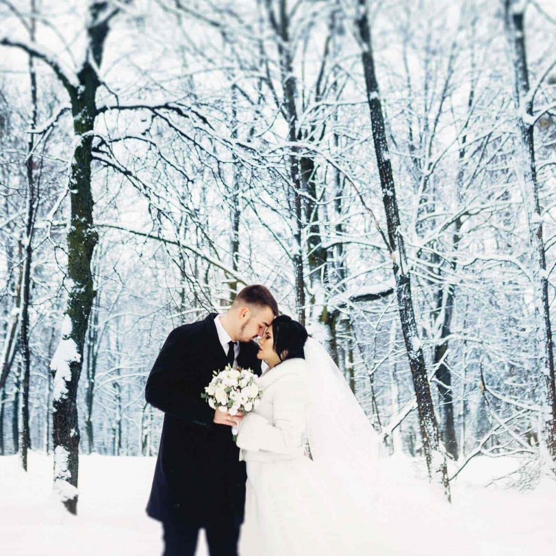 bride and groom in a winter landscape