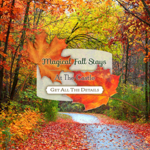Foliage Season Marketing Graphic
