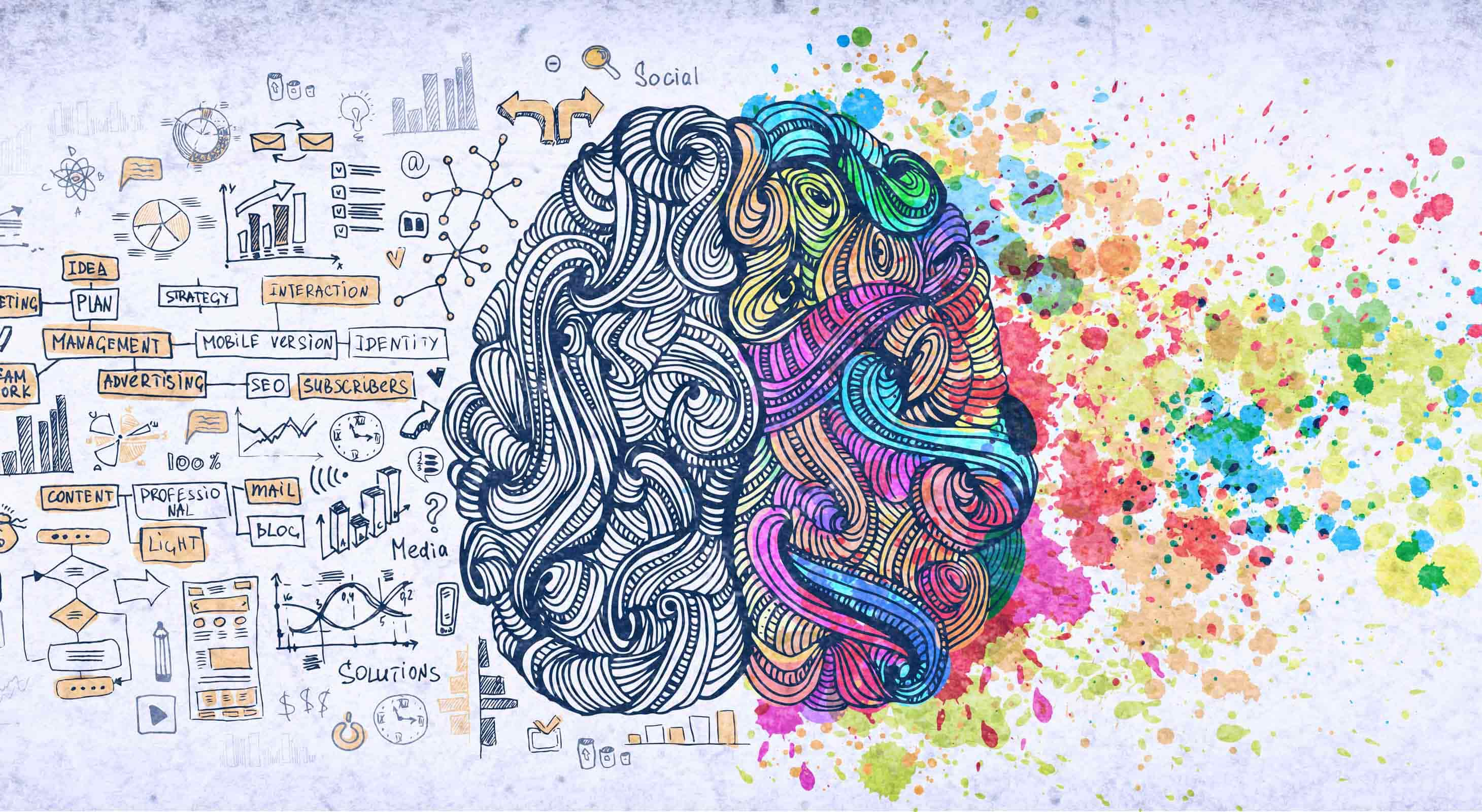 Illustration of analytic and creative brain