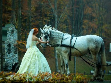 Bride and Horse - Wedding