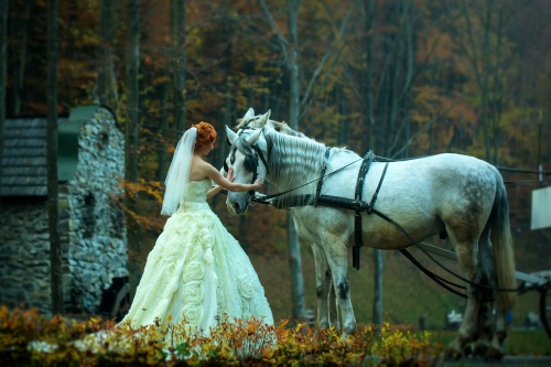 Wedding Venue - Bride with Horse
