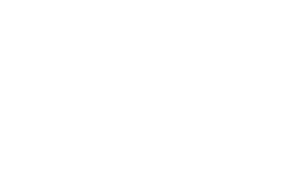 Castle In the Country Logo