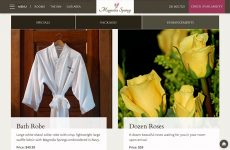 Magnolia Springs - Premium Template Website