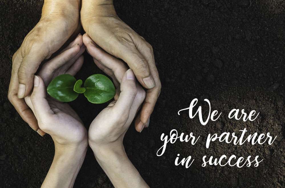 Two sets of hands cradling a seedline on dirt with a saying of We are your partner in success