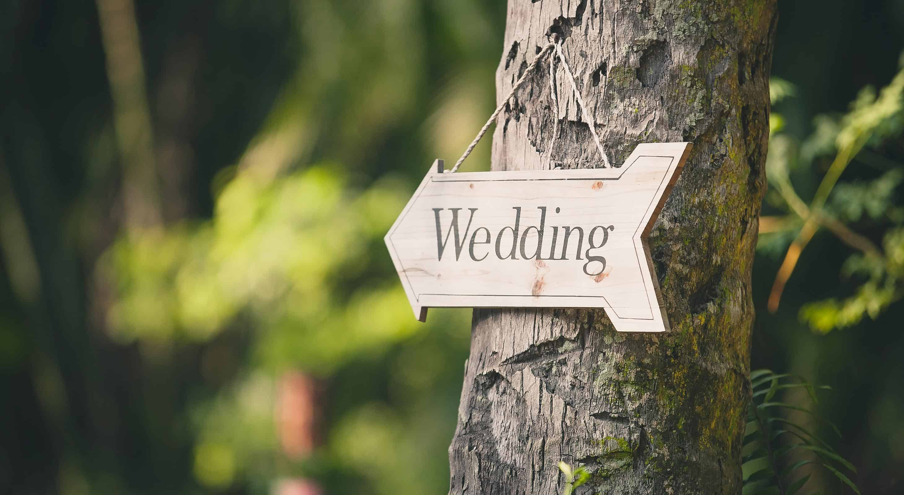 Wedding written on a wooden sign on a tree