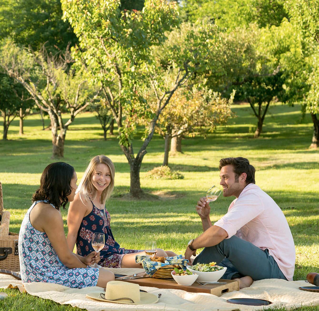 trio sitting on lawn enjoying a Virginia picnic