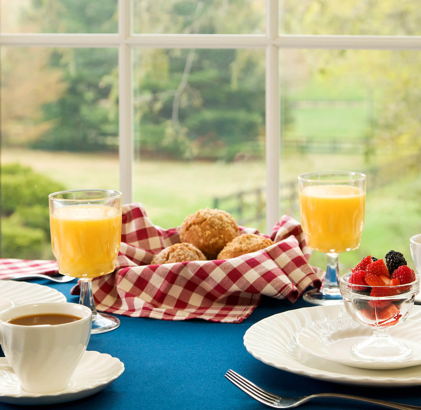 quaint bed and breakfast table with juice and muffins