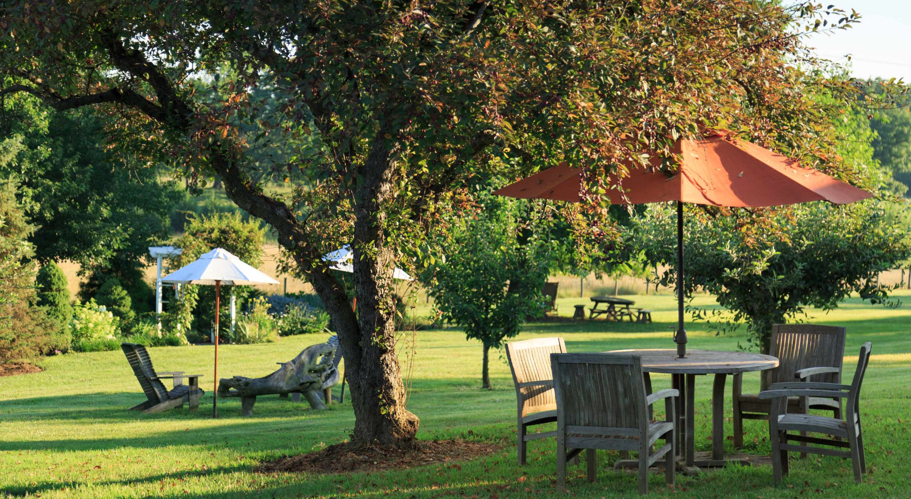 outdoor seating and gardens in Virginia